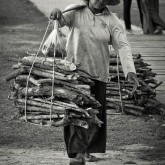The wood collector : 01, Siem Reap, Cambodia
